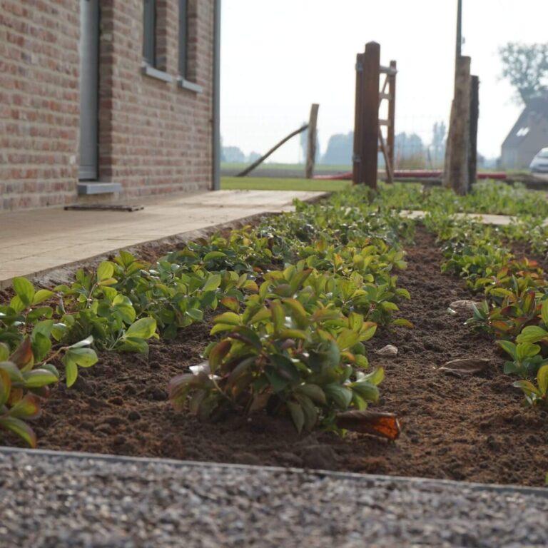 een landelijke tuin tuinen crombez