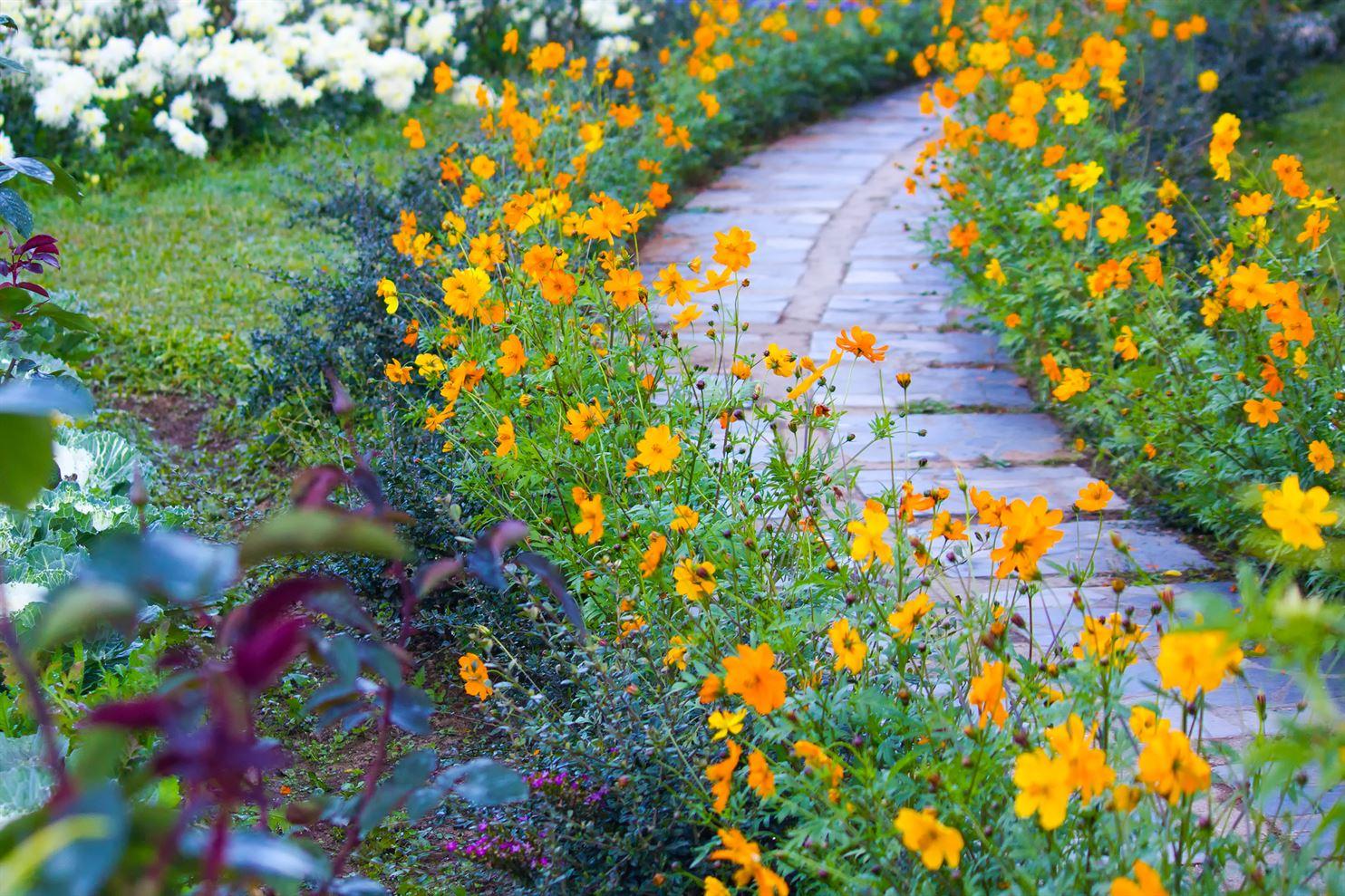 groenborder aanleg tuinen crombez