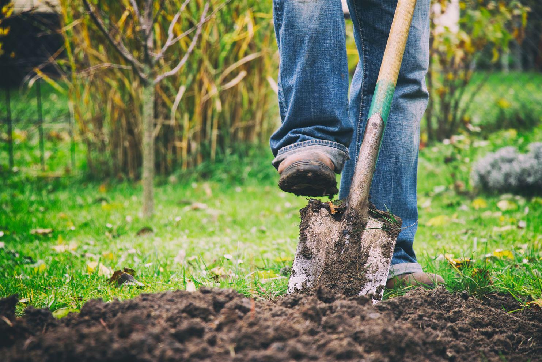 groenvoorziening tuinen crombez grond omspitten