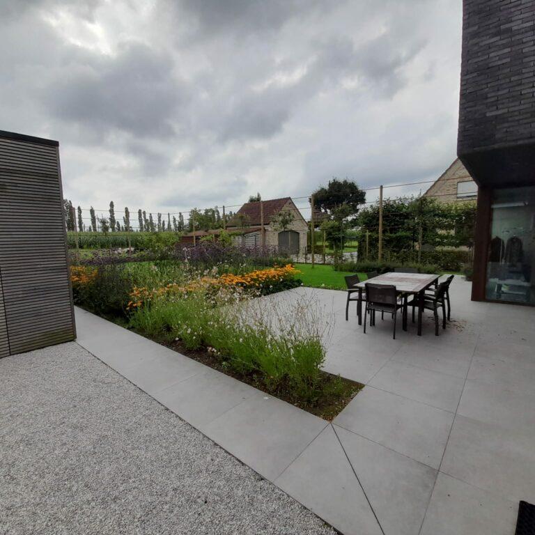 Moderne tuin met leibomen